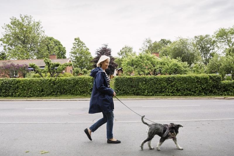Женщина идет с собакой
