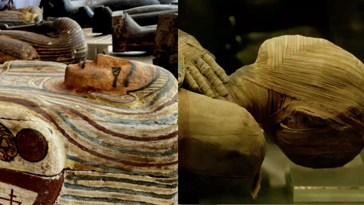 Месть фараонов. Настигнет ли проклятие египтологов, нашедших нетронутую гробницу? |(СОК.Медиа)