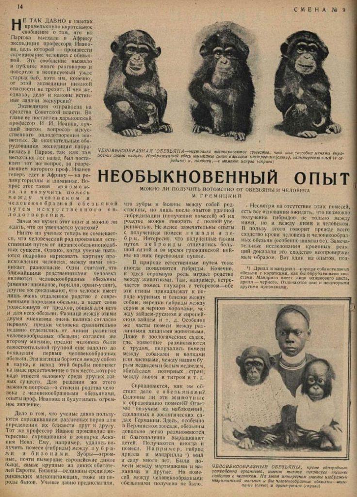 Бабет, Сивет и Черная. Чем закончились дикие эксперименты по скрещиванию человека с шимпанзе в СССР?|(СОК.Медиа)